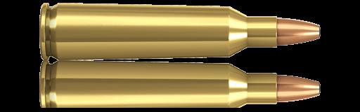 22-250 remington Norma