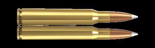 Norma 7x64 Nosler accubond