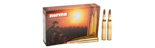 9,3x74 R PPDC Norma 285 gr