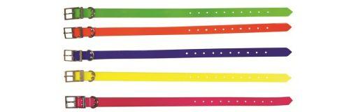 collier pour chien Fuzyon TPU 60 x 2,5 cm