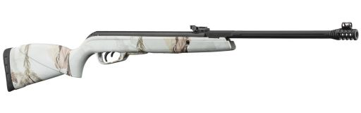 carabine à plomb Gamo Black 1000 Winter