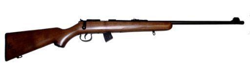 carabine 22 LR Norinco JW15