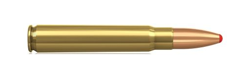 cartouche à balle Norma 9,3x62 PPDC