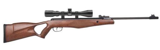carabine à plomb Diana 250 pack