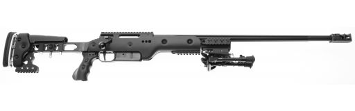 carabine 308 Sig Sauer SSG 3000 Super Target