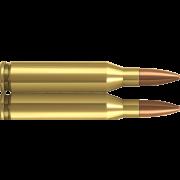 Norma 243 winchester blindée