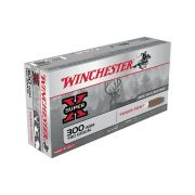 300 WSM Power Point 180 gr
